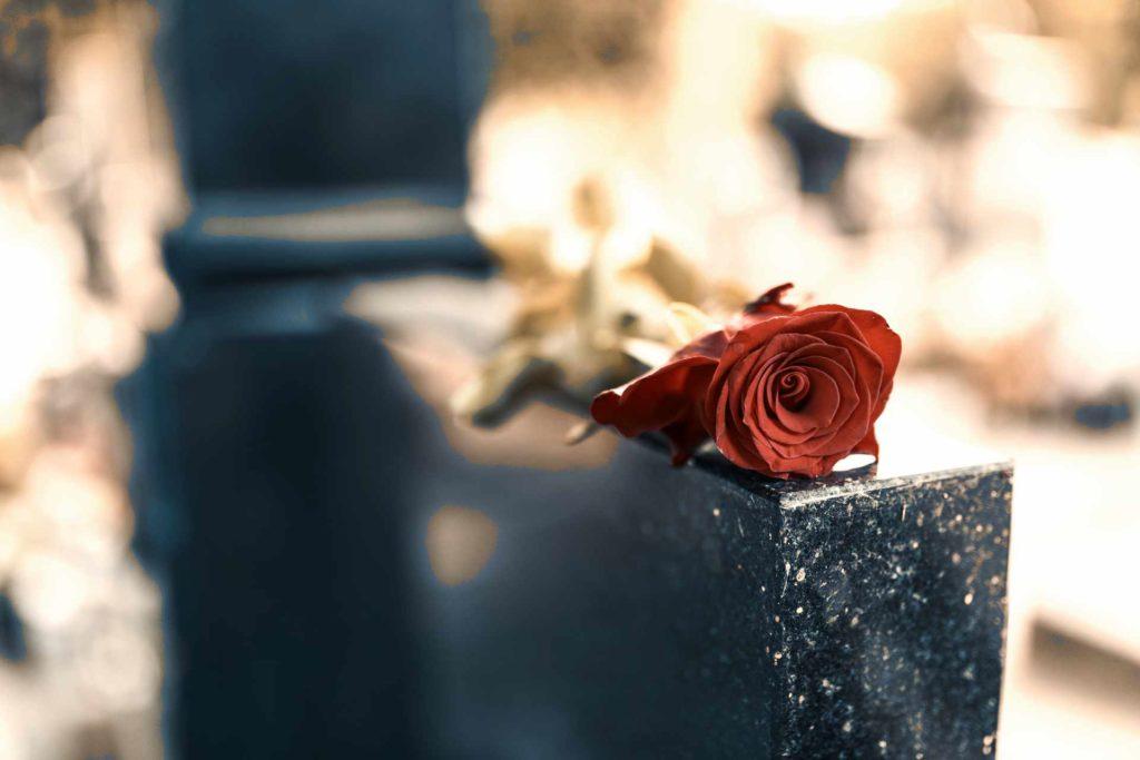 rose rouge posée sur une pierre tombale